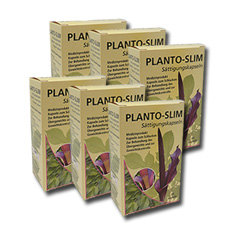 Planto-Slim 2 Monats Intensiv Kur (384 Kapseln)