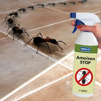 Ameisen-STOP 500 ml
