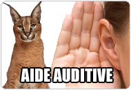 Aide auditive